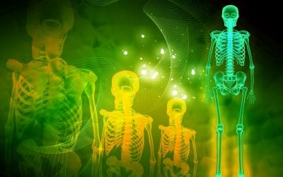 骨粗鬆症を防ぐ